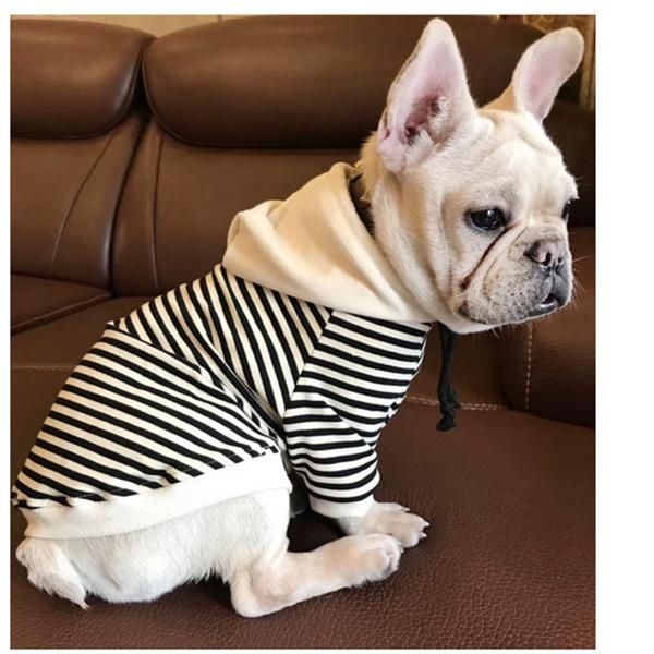 Frenchie Striped Hoodie Made From Cotton Sizes From Xs To Xl