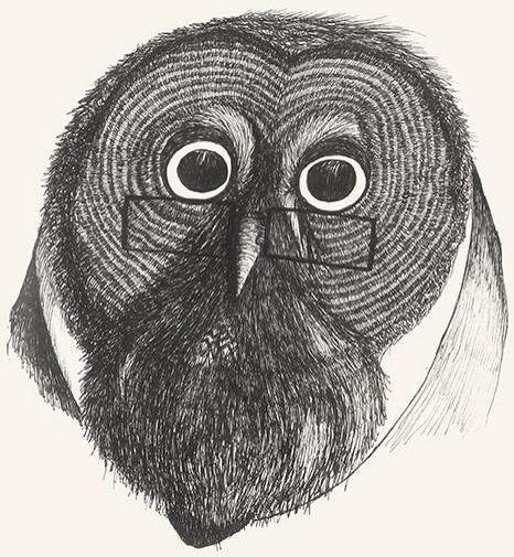 Mr Tylluan owl drawing old medieval by Leo Bellei.