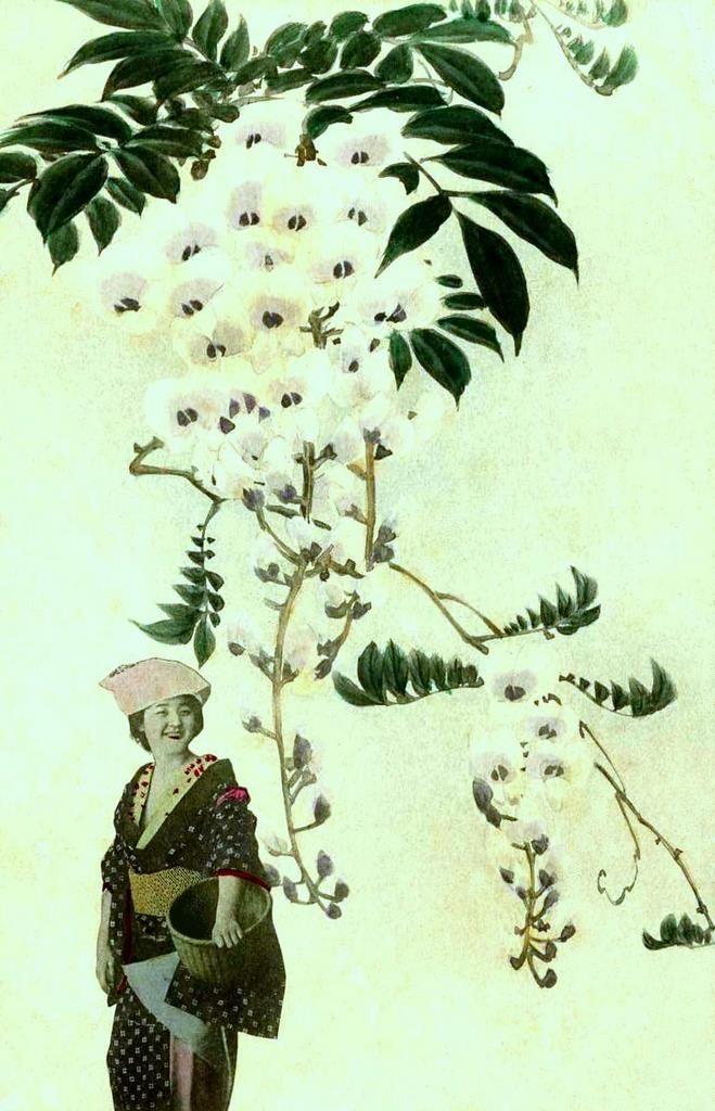 Geisha Tokimatsu (Emiko). Meiji era.: Photos, Meiji Era, Geishas, Floating, Collage, Geisha Tokimatsu, Tokimatsu Emiko, Geisha But