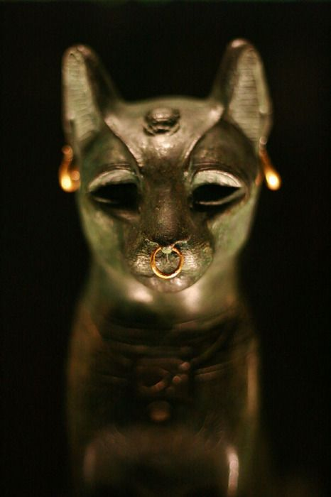 The British Museum-Ancient Egyptian Catl