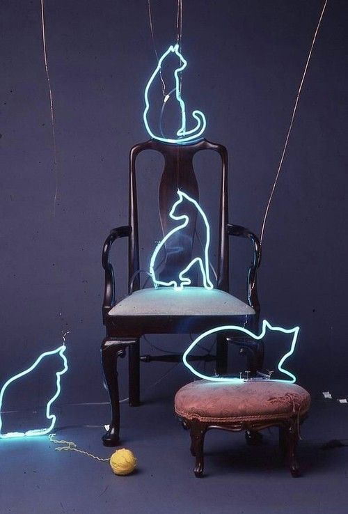 Ghost Cats of Neon