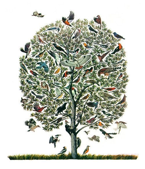 Vintage Feather Print Tree of Birds Natural by missquitecontrary, $30.00