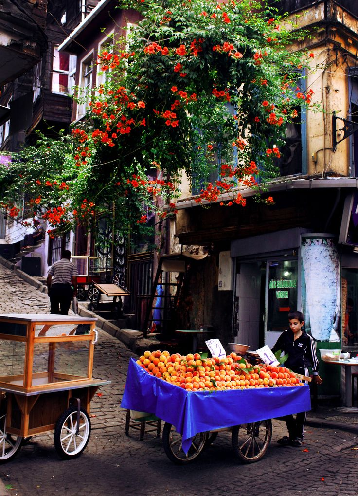 Boy selling peaches | Istanbul, Turkey