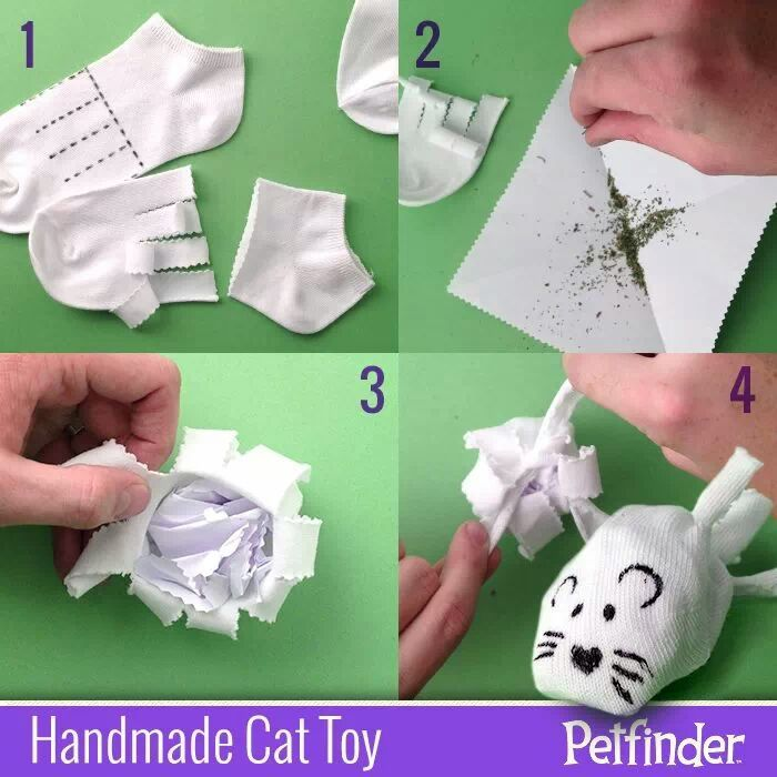 Petfinder shows us how to make a catnip toy out of an old for How to make a cat toy out of a box