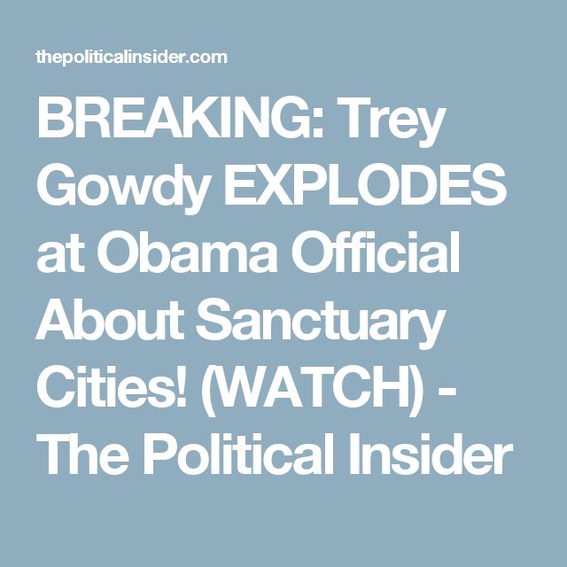 BREAKING: Trey Gowdy EXPLODES at Obama Official About Sanctuary Cities! (WATCH) - The Political Insider