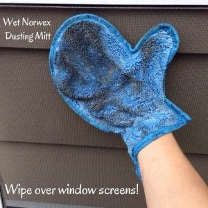 You mean I am supposed to be cleaning my own house too?! It's much more fun to bring my bag of Norwex to your house instead! My window screens are filthy after a long Winter and a dismal Spring. Th...