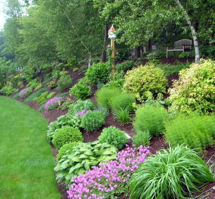Landscape steep backyard hill pictures landscaping ideas for Garden designs on a slope