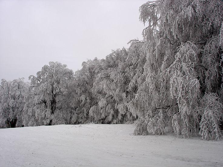 Crimea. Ай-Петри зимой.