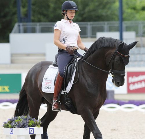 Kristina Sprehe and Desperados FRH enjoying schooling in a snaffle © Ilse Schwarz/dressage-news.com