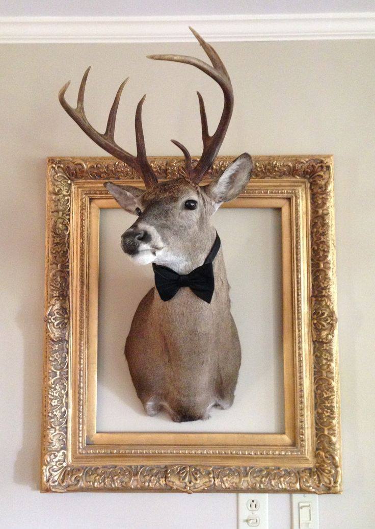 Frame the deer head with gold frame and bow tie
