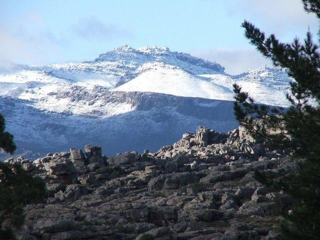 Cedar Peak near Porterville