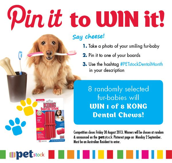 It's dental month at PETstock and to celebrate we're giving 8 lucky pinners the chance to WIN KONG Dental Chews! Competition closes Friday 30 August 2013. Winners will be chosen at random and announced on the PETstock Pinterest page on Monday 2 September 2013. #PETstockDentalMonth