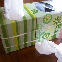 New Use for an empty Tissue Box. Perfect for allergy moments!