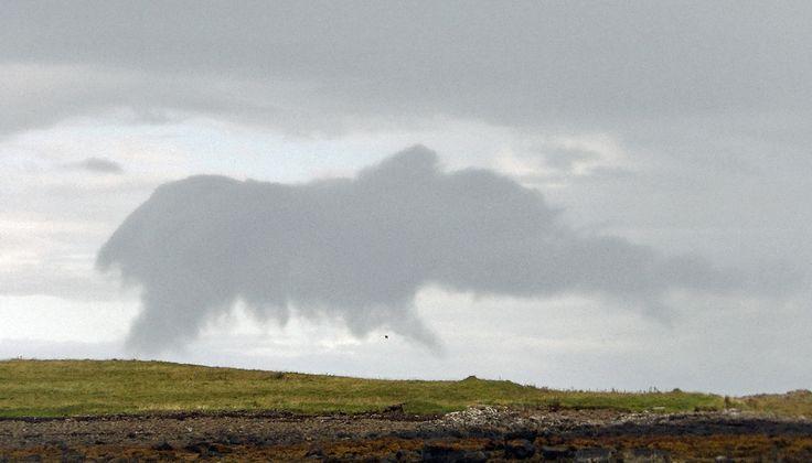An Elephant over Staffin beach on the Isle of Skye.