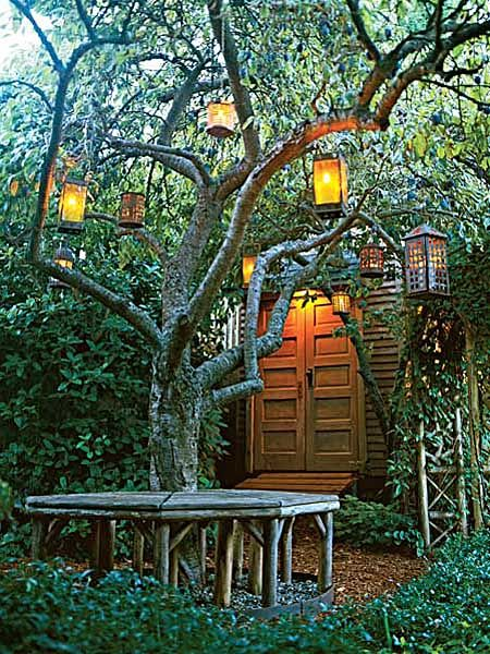 Lanterns of all sizes and shapes suspend from the branches of an Italian plum tree. Photo Credit Ray Kachatorian