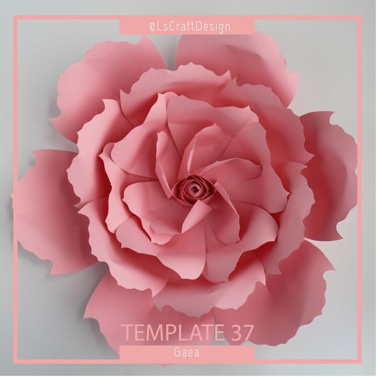 paper flower template pdf paper flower paper flower kit diy paper flower giant paper flower