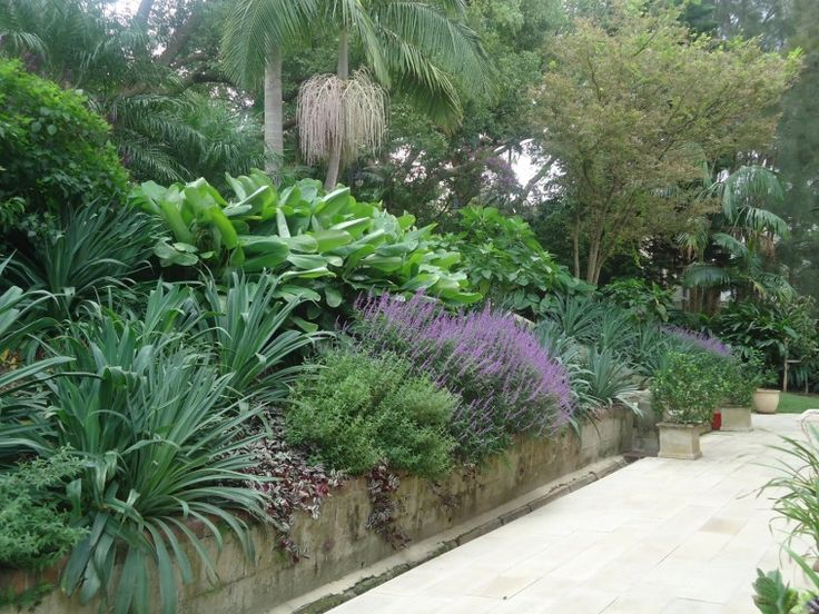 Gardenesque by Myles Baldwin