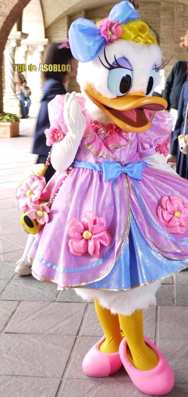 Find This Pin And More On Daisy Duck