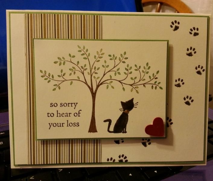 Kitty Sympathy DIM 8-21-2014 by jdmeeks - Cards and Paper Crafts at Splitcoaststampers
