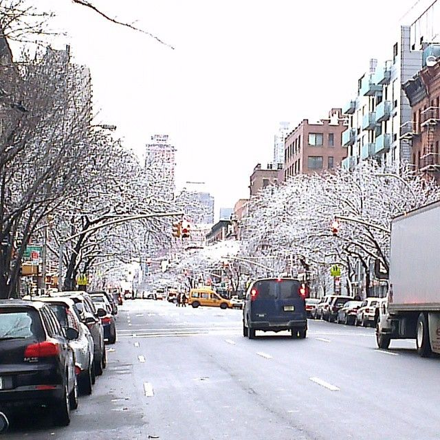 Springtime in New York, trees dusted with snow. #OceansRoadTrip15 #NYC #NoFilters