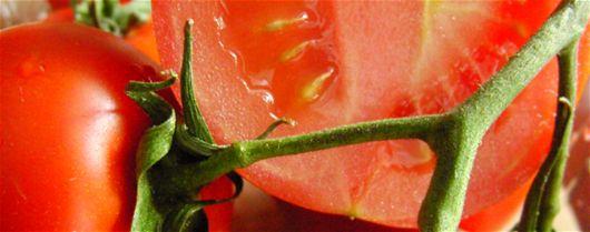 Få dine egne tomatfrø - Grønnsaker, Kjøkkenhage, Hagetips