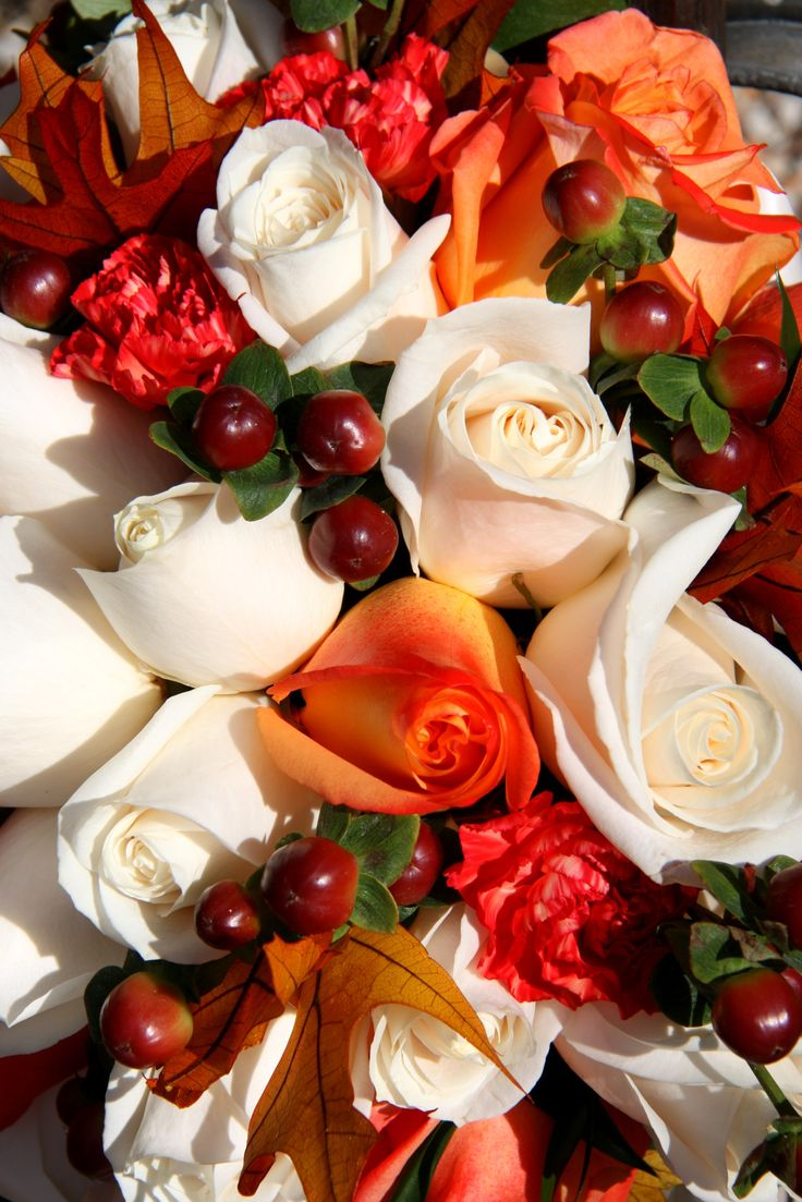 """Fall Wedding Bouquet - love the white roses, would like to have pearls, """"berries"""", and burnt orange zinnias, with some red flower. All wrapped in chocolate brown ribbon?"""