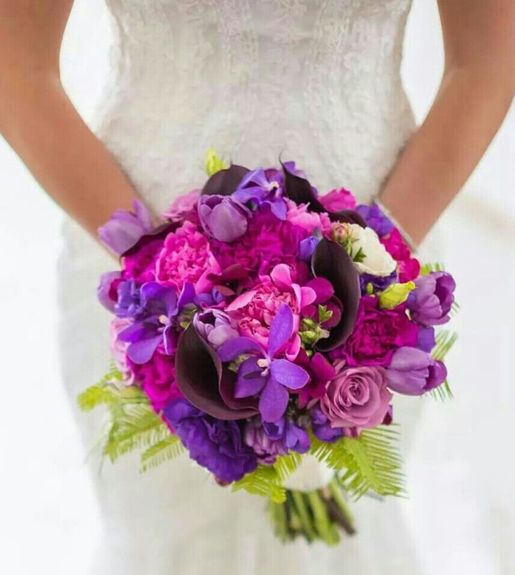 Bight purple and pinks