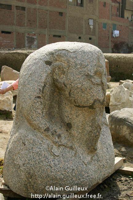 Souk al Khamis, vestiges du temple de Ramsès II : restes du buste d'un colosse en granit, remploi du Moyen Empire, probablement du règne de Sésostris Ier, XIIe dynastie. Source : http://alain.guilleux.free.fr/galerie-heliopolis-souk-al-khamis/heliopolis-souk-al-khamis.php