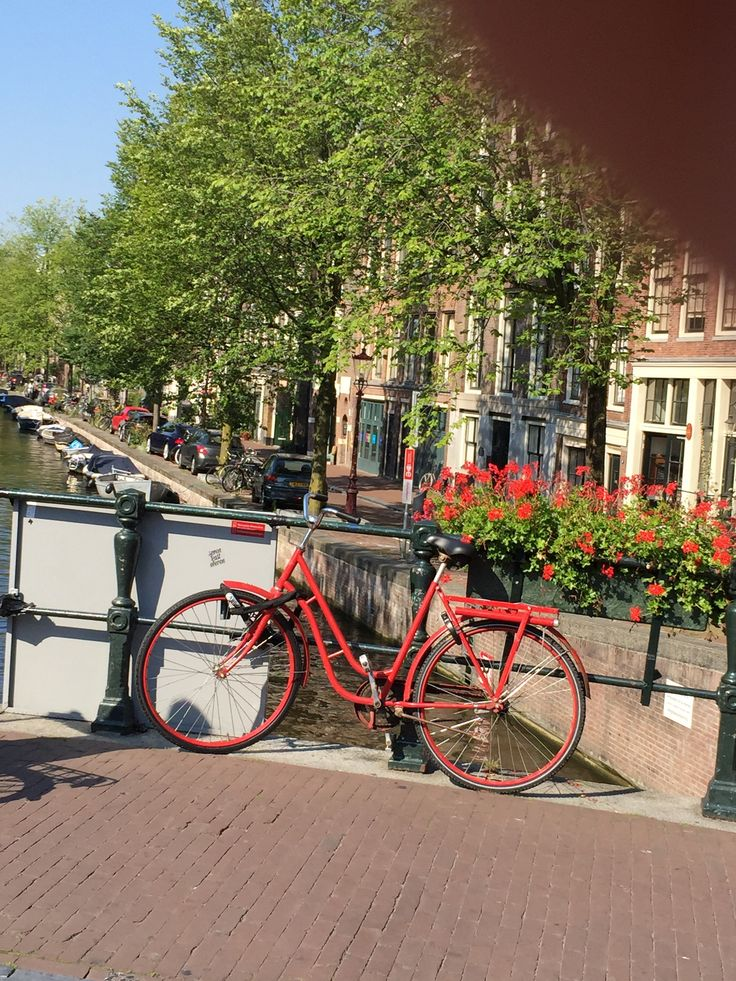 postcard from Amsterdam, august 2015