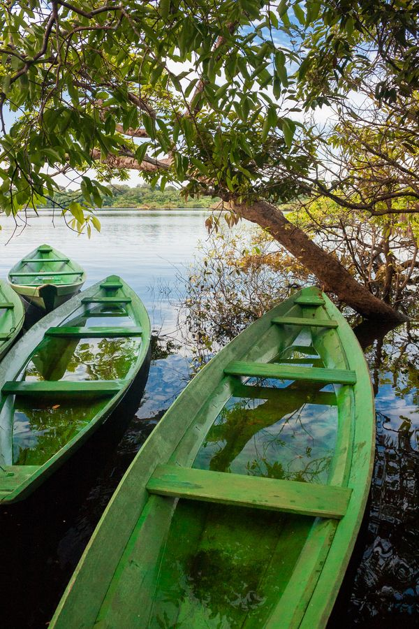 Canoes - Amazonas, Brazil   Photo By -  Otavio Socachewsky