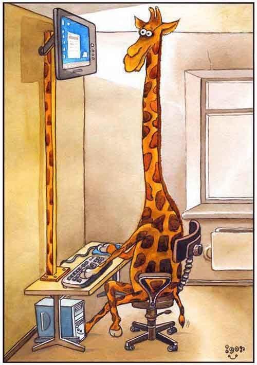 Geoffrey was the smartest in the herd