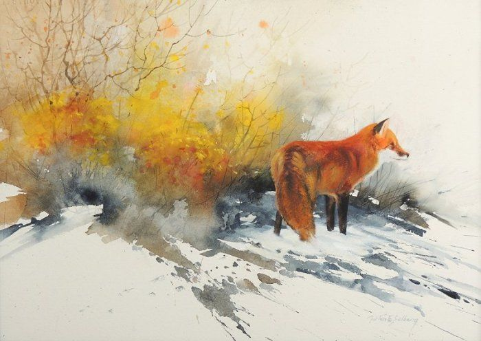 watercolor fox paintings | Original Painting by Morten E. Solberg: Red Fox Study