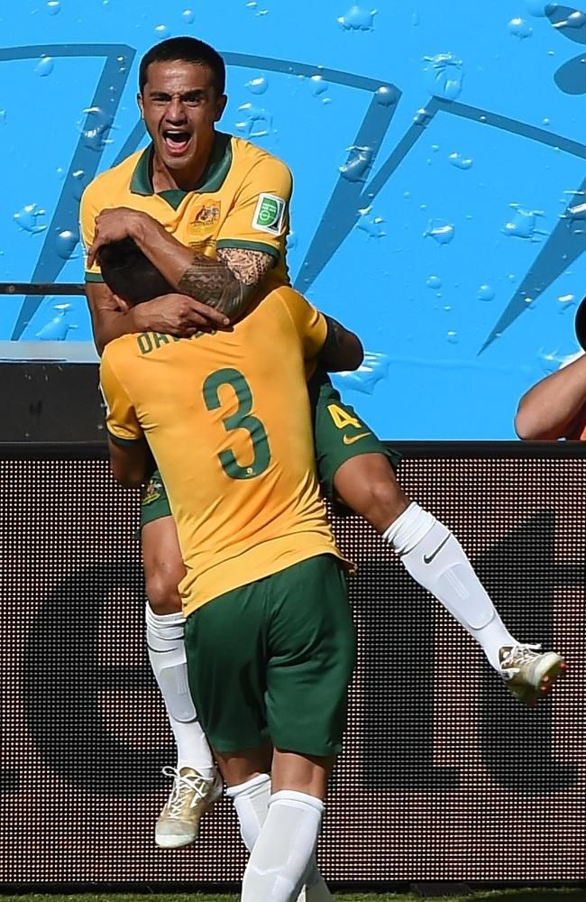 Tim Cahill celebrates the goal of a lifetime against Holland.