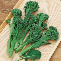 タキイネット通販/野菜のタネ(種子)/全品目から選ぶ/ブロッコリー/茎ブロッコリー・グリーンボイス