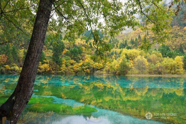 Jiuzhaigou Valley Scenic and Historical Interest Area 九寨溝