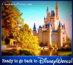 Top Ten Cheapskate Tips Every Disney World Visitor Needs to Know...(planning article)
