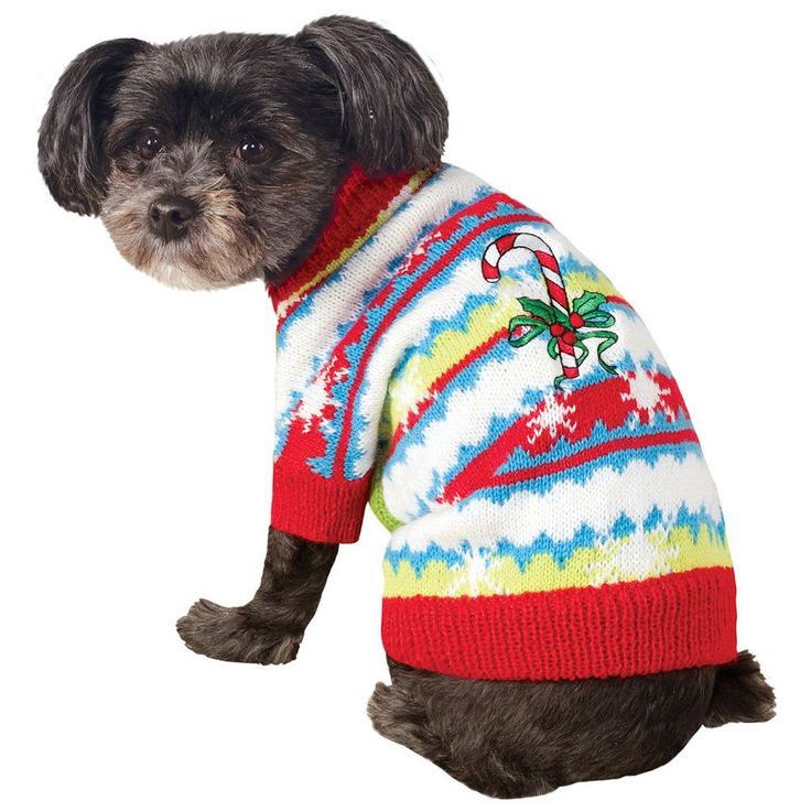 Pet Ugly Christmas Sweater with Candy Canes Costume, Multicolor