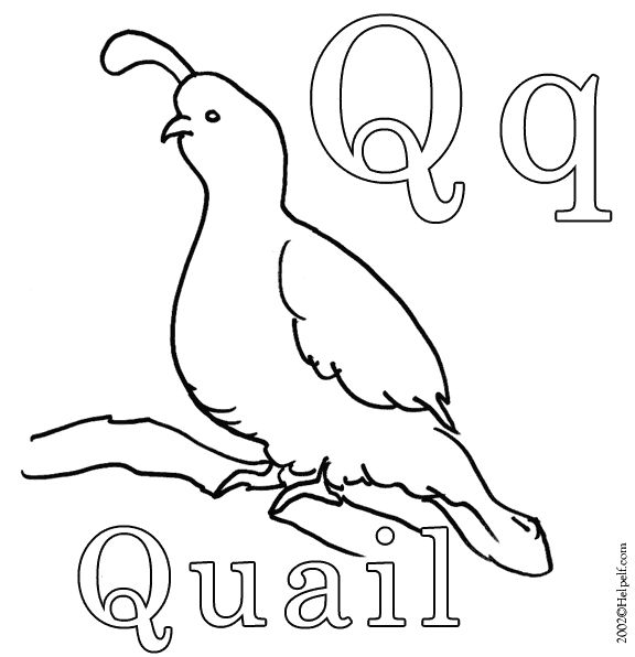 q coloring pages for preschool - photo #16