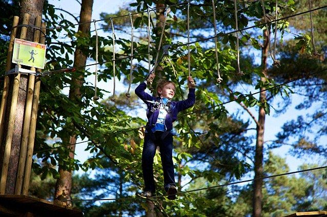 The plan is to build a Go Ape tree top adventure, similar to the one pictured, in Battersea Park