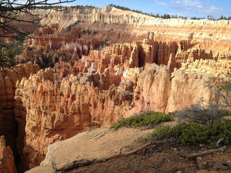 Bryce canyon in spring season