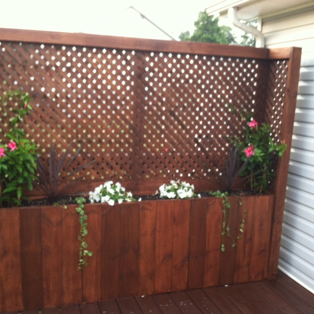 Best 25 privacy planter ideas on pinterest privacy for Trellis planter garden screen