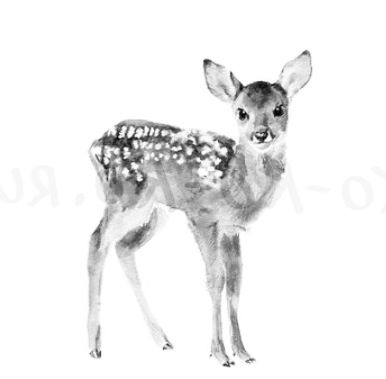 FAWN tattoo! Reminds you to be gentle, to be familiar with your surroundings, and to still have that child-like innocence .