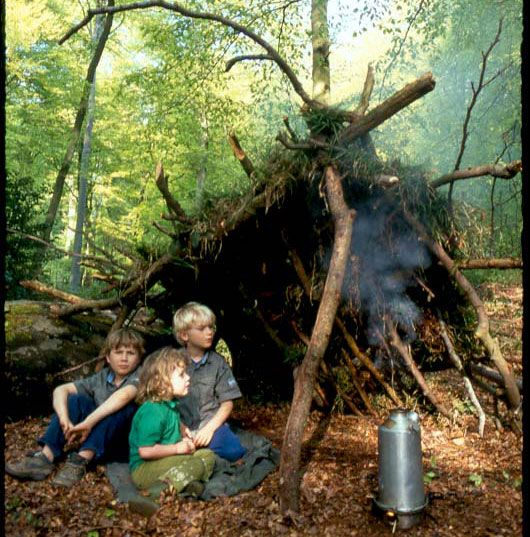 Going wild website - fantastic ideas for outdoors natural play