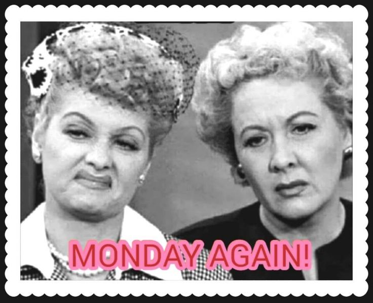 Happy Monday Meme Funny : Best monday humor images inspire quotes good