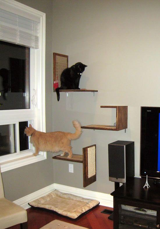 Jake And Karenu0027s DIY Modern Cat Platforms Part 88