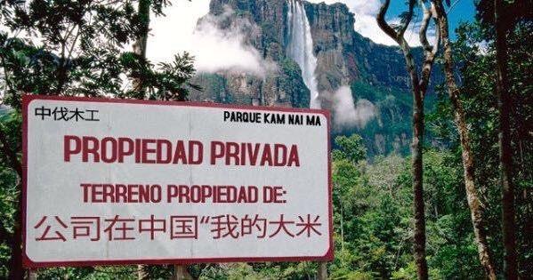 Que saben ustedes de esto? Los que me conocen saben que para mi la naturaleza es sagrada pero esto es demasiado. Propiedad privada? Un parque nacional siendo explotado para obtener oro y piedras preciosas? #venezuela #saltoangel #amazonas #gransabana #fueramaduro #sosvenezuela #mineria #jungle #chinos #venezolanos #pachamama #madretierra #pic #picoftheday #maravillas