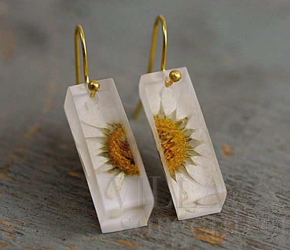SPECIAL OFFER: Real daisy bar earrings. Daisies in transparent resin bar. Gold…