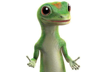 Geico Online Quote 25 Best Geico Gecko Images On Pinterest  Geckos Ha Ha And Chameleon