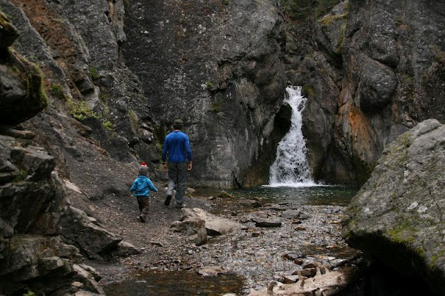 Cat Creek Interpretive Trail, Kananaskis, 4km return, easy trail, highlight is the waterfall because the whole thing is in a canyon (flowers & leaves don't matter on this one)