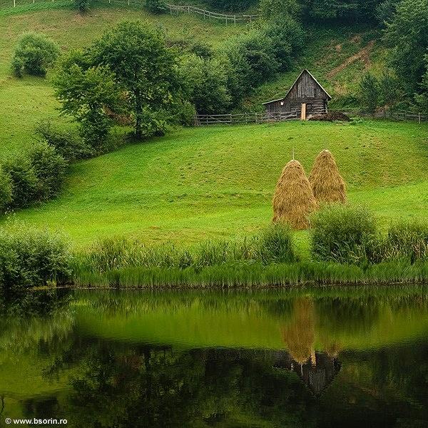 Green - Romania -Transilvania